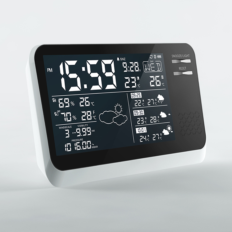 Professional Wind Speed Weather Station Meter