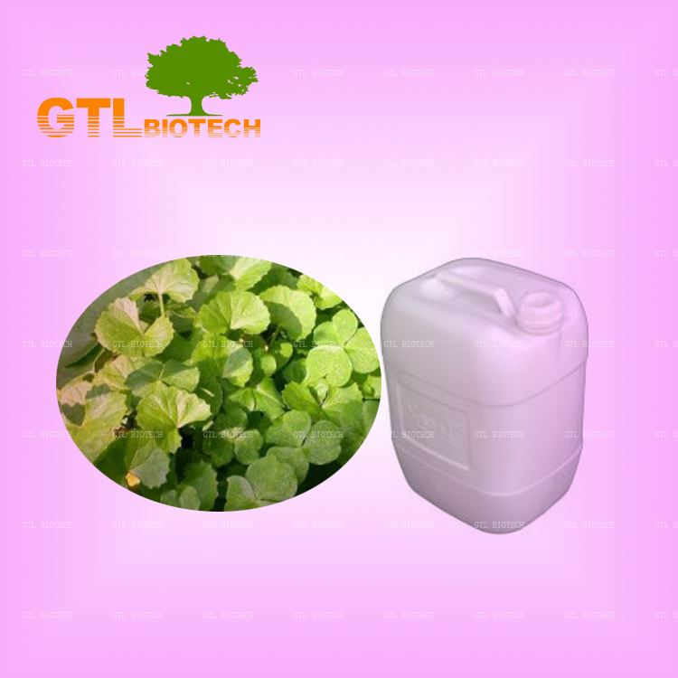 Manufacturer Supply Asiatic Pennywort Herb Liquid Extract Bulk from GTL BIOTECH