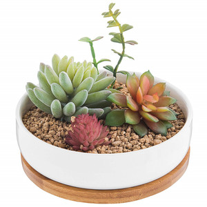 6.2 Inch Modern White Ceramic Succulent Cactus Plant Pot with Drainage Bamboo Tray,Decorative Garden Flower Holder Pot Ceramic