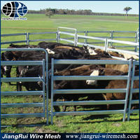 Alive Style and Livestock Product Type cattle yard panel / cattle panel fence / cattle panel galvanized
