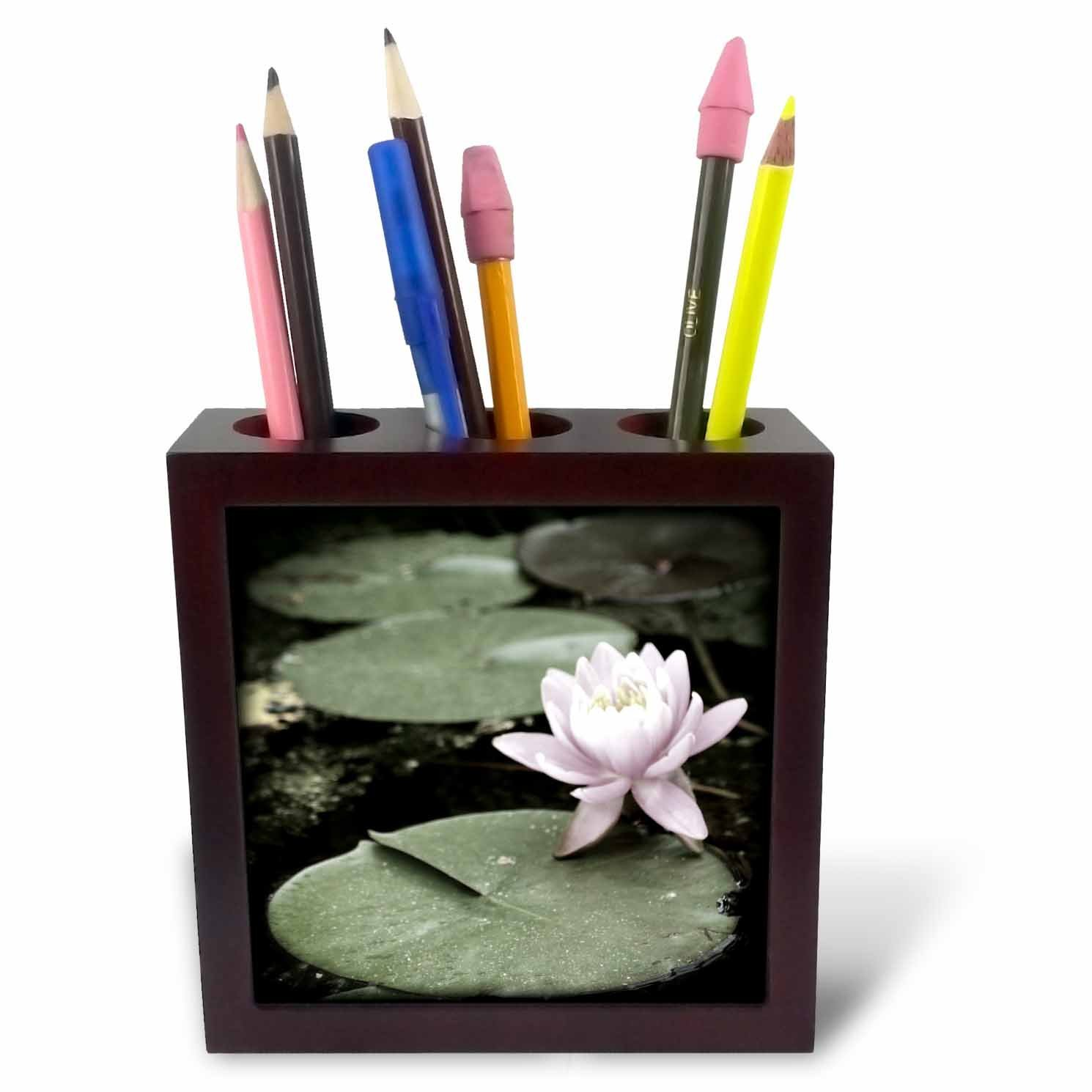 Cheap pink lily flower find pink lily flower deals on line at get quotations 3drose whiteoaks photography and artwork lily flowers pink water lily flower is a beautiful izmirmasajfo