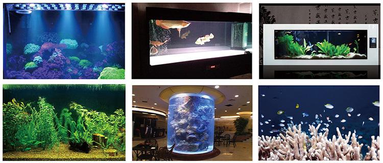 200 Watt Aquarium Lighting Led Used Fish Tanks For Sale,36in Led ...