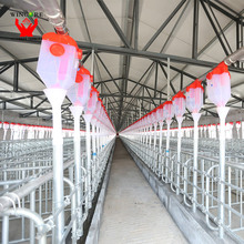 Automatic pig feeder feeding cages system pig farming equipment