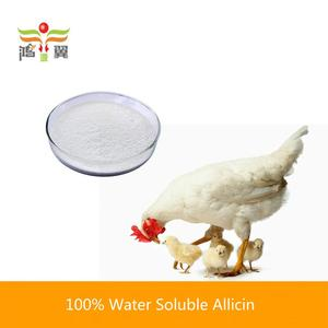 100% natural garlic allicin for chicken layer feed concentrate