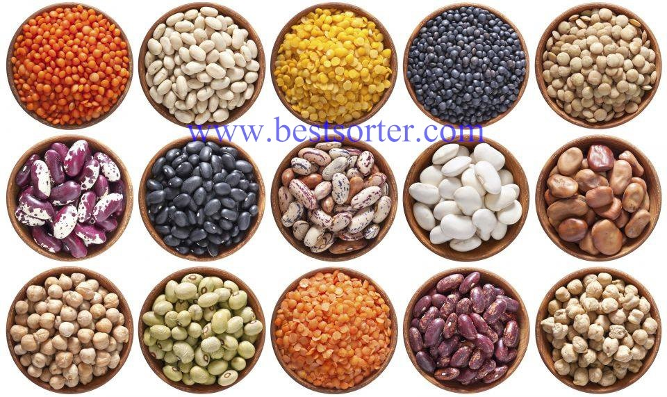 Automatic CCD Cereal Color Sorter Machine For Raisin/Sesame/Pea Seed/Vicia Faba Color Sorting