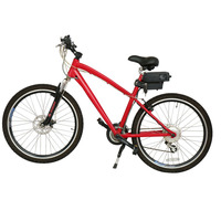 Factory Aluminium Alloy Fat Tire Electric Bicycle