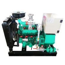 10kW-300kW biogas /natural gas genset generator with CE certificate