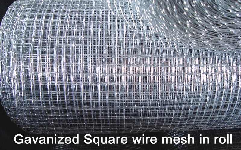 Cheap And Fine Hot Dipped Galvanized Square Chicken Wire Mesh With ...