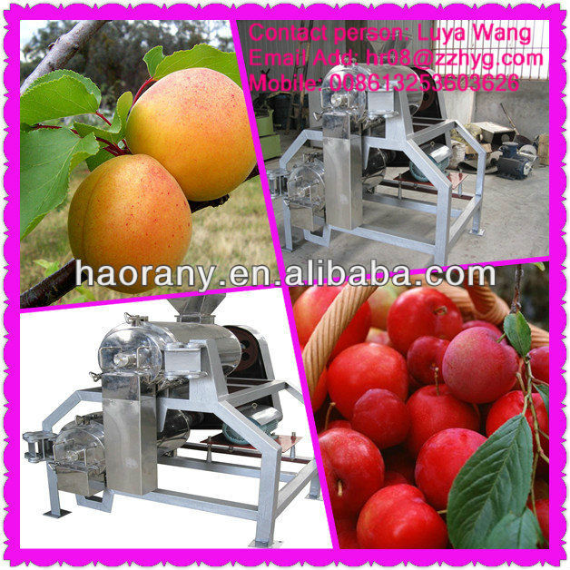 Low cost mango destoning and pulping machine in promotion