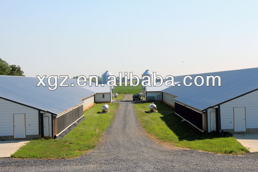 low cost modern automatic equipment steel big chicken house broiler shed