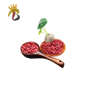 High quality Dark Red Kidney Beans shanxi origin