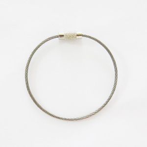 Stainless Steel Keychain Screw Lock Ring Wire Key Ring Hoop