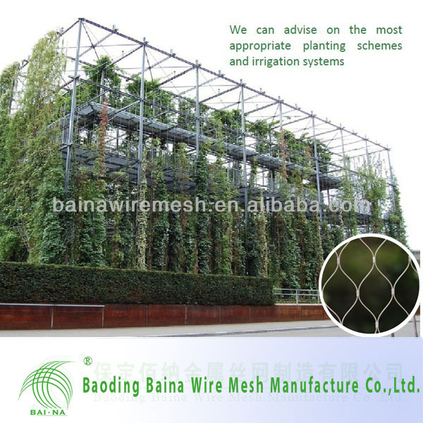 Architectural Surface Plant Climbing Net