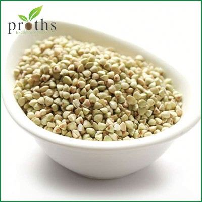 Alibaba high quality sale pure tartary buckwheat extracts
