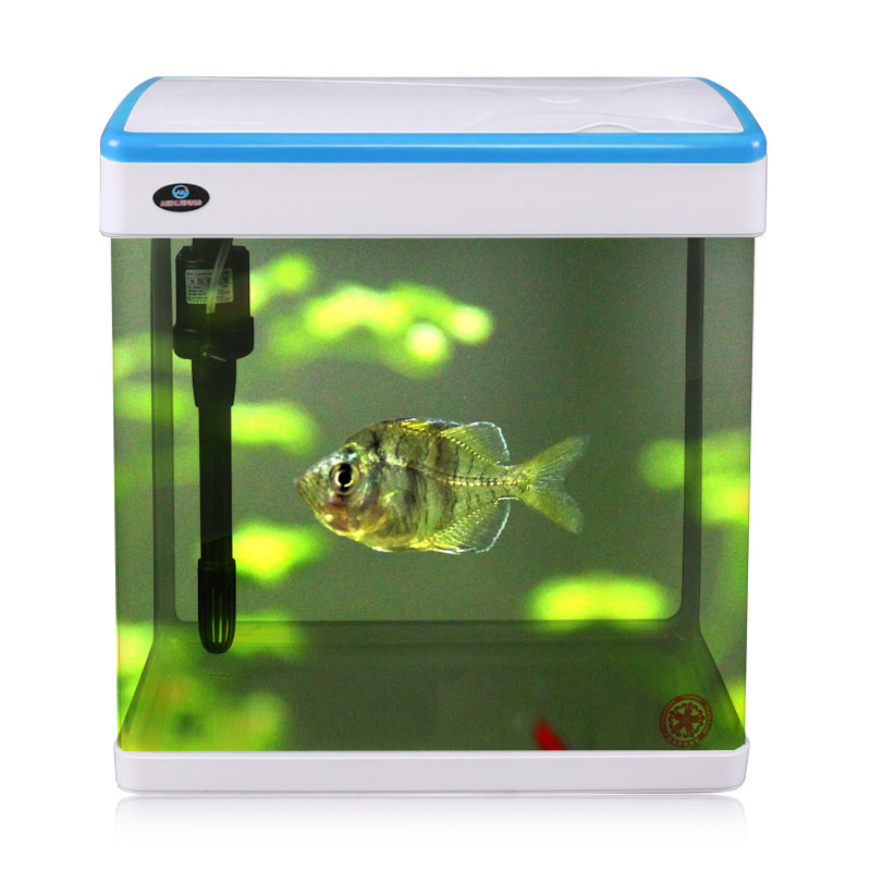 Hot selling lid Portable Mini glass tank for Golden <strong>fish</strong> with low price