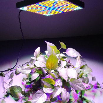 45W 2400LM 225 Garden Plant Grow Light Silver