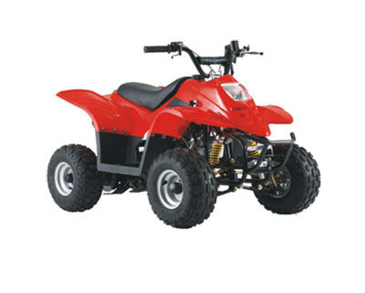 battery module for All-terrain vehicle