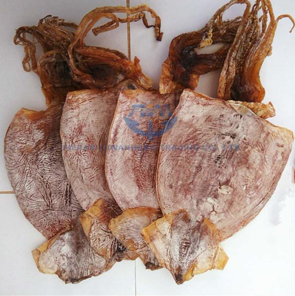 Secchi todarodes calamari tutto calamari secchi fornitore