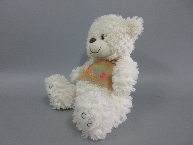 Hot sale plush teddy bear