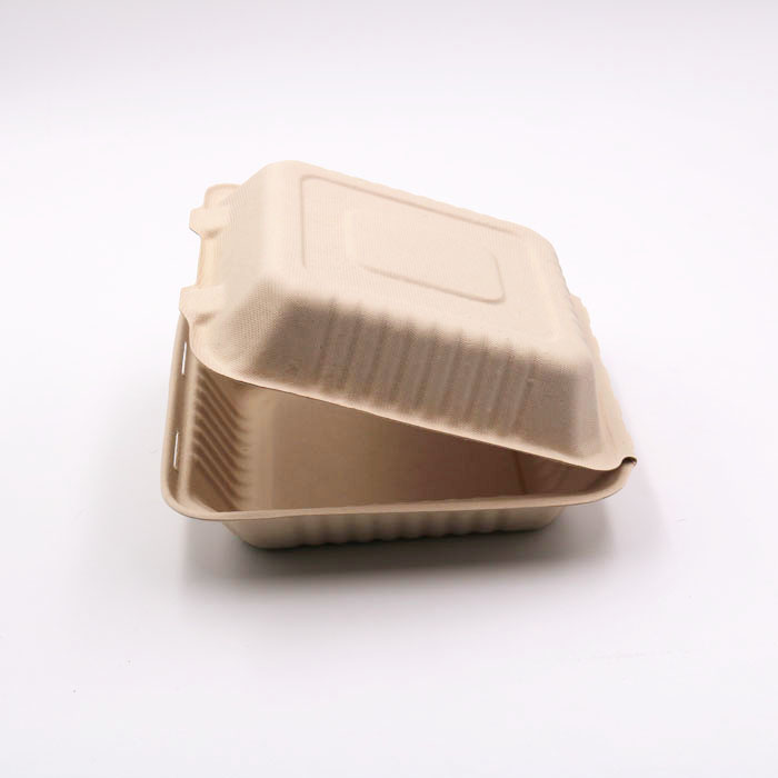 bagasse fiber white compostable lunch food tray