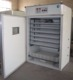 China Dezhou 1000 chicken eggs commercial egg incubator