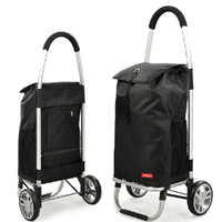 Durale beautiful folding shopping trolley bag with 2 wheels
