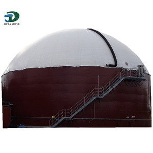 China advanced technology on biogas plant biogas digester for sale