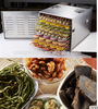 10 Trays Food Dehydrator For Home Use