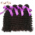 High Quality 100% unprocessed Natural Color curly indian hair company