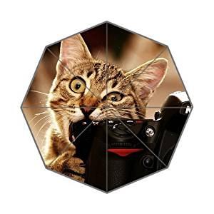 NovemberRain Cats_Bite_Funny_Cameras Custom Foldable Umbrella Fashion Design All-Weather Umbrella