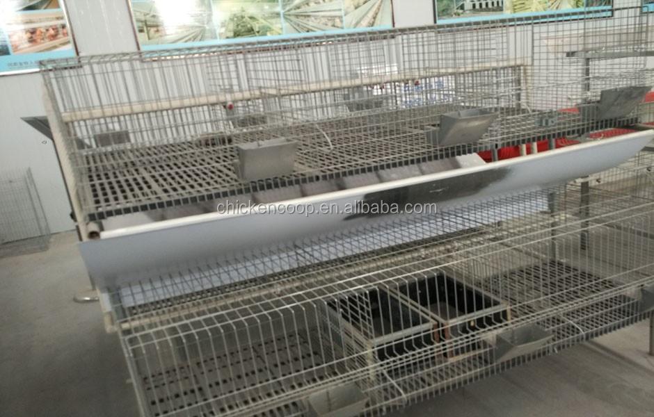 Professionelle Hersteller Geflügelhaltung Ausrüstung Zucht ...