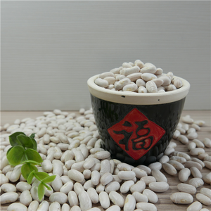 2018 crop White kidney beans price/Haricot beans/Baked bean