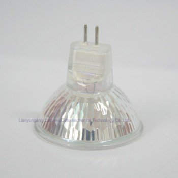 Whole Par 30 Halogen Light