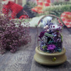 purple red rose in glass dome