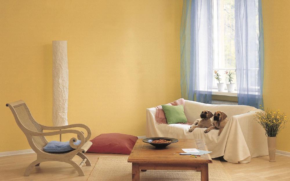 Caboli Interior Home Appliance Chrome Effect Powder Coating