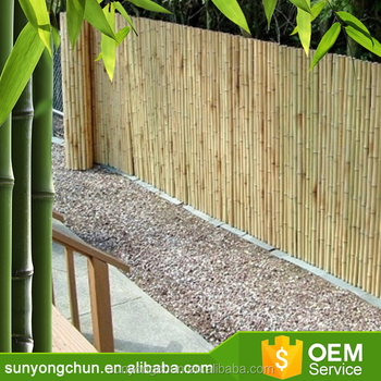 Thailand Calcutta Stick Screen Poles Purchasers In India Tonkin Bamboo  Fence Tonkin Cane Fence Bamboo Screen - Buy Bamboo Bunch Cane,Cheap Bamboo