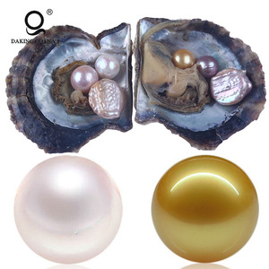 Wholesale Multiple Natural Round Single Akoya Pearl Oyster With Saltwater Pearl Farm