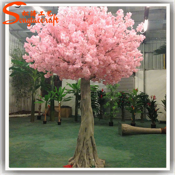 Newest For Mini Japanese Cherry Blossom Tree Pink Wool