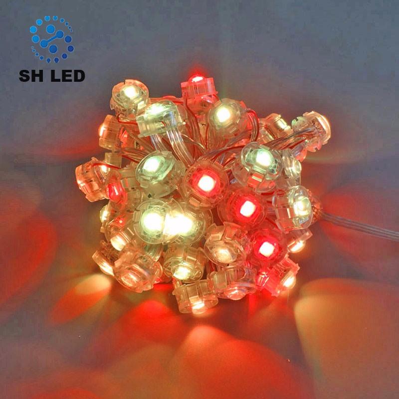 Multi-cover High Quality SMD5050 5V 20MM Led Point Light Source for Outdoor Landscape Lighting