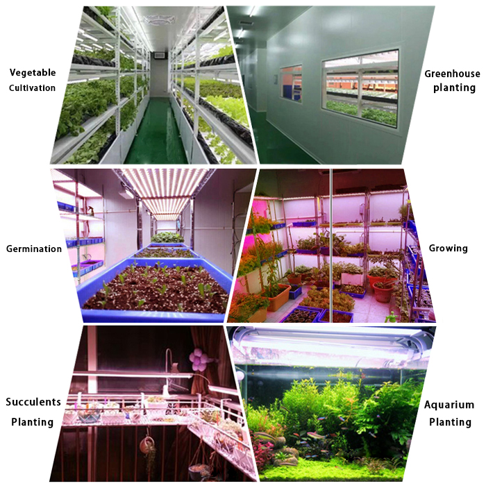 Customized Adjustable Length and Spectrum Grow Lamp for Agricultural Combined Optional Plant LED Grow Light Bar