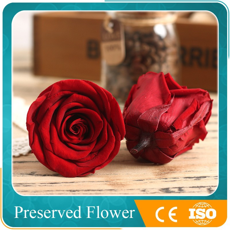 Wholesale Decorative Forever Red Preserved Roses Flower