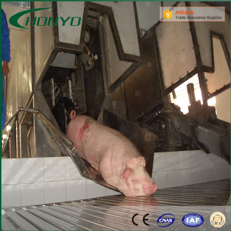 Turnkey Automatic Pig Slaughtering Line Equipment Machine For Slaughterhouse Abattoir Project