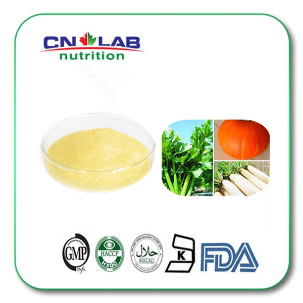 GMP Vitamin B2 Riboflavin Manufacturer from China