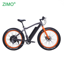 2018 New 750w Bafang Motor Pedal Assist Electric Fat Bike for men