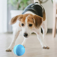 The new smart pet toy for both dog and cat automatical play when are leave dog throwing ball