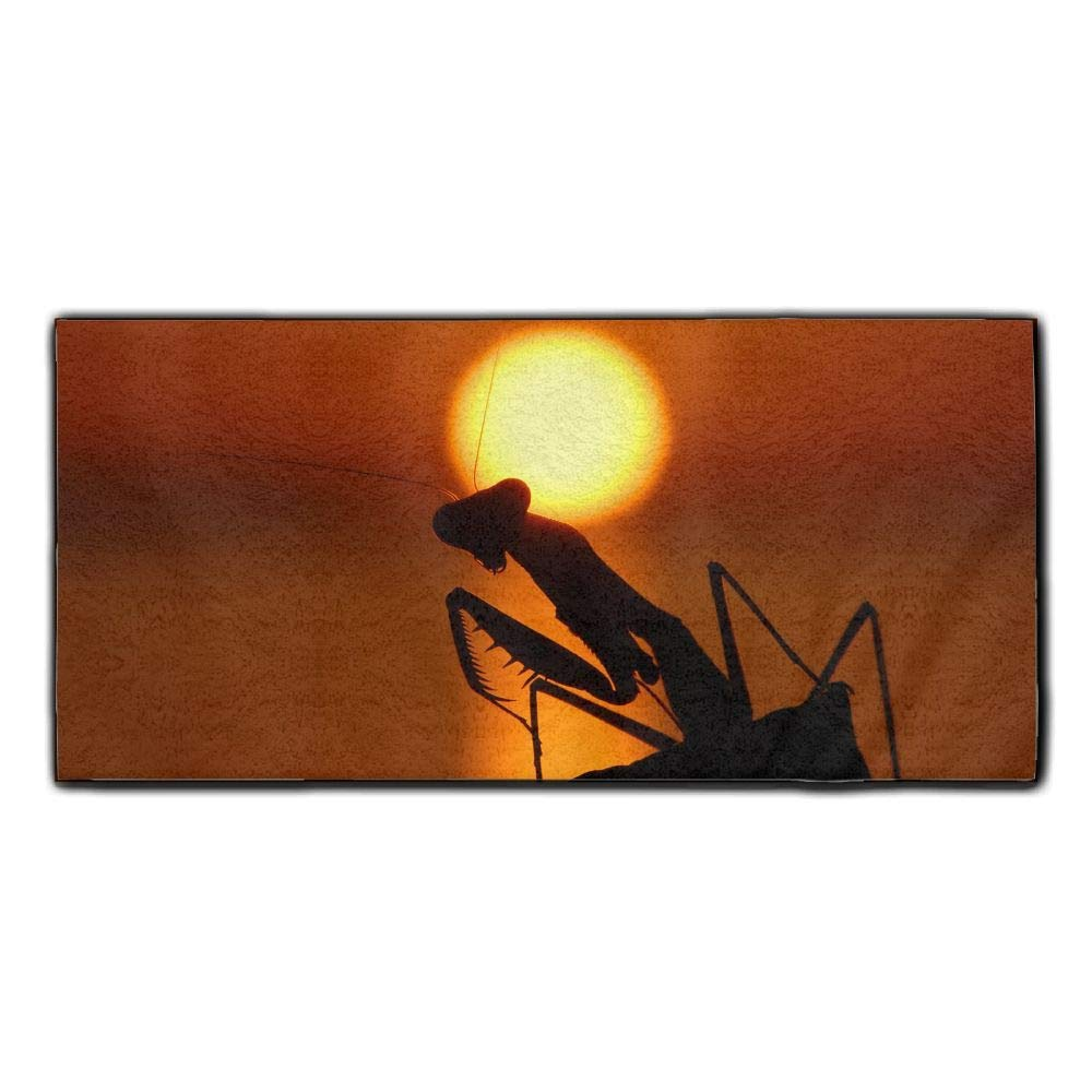 Baerg Microfiber Super Absorbent Face Towel Sunset Mantis Hair Care Towel Gym Spa Towel