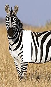 Light Switch Plate African Animal Zebra Art African Art Zebra Zebra Animal African Zebra Animal Art Wall Art Home Decor Usa Made
