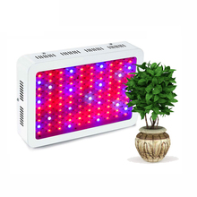 300 w 600 w 1200 w Fabbrica Pianta Città Agricoltura <span class=keywords><strong>led</strong></span> <span class=keywords><strong>coltiva</strong></span> <span class=keywords><strong>la</strong></span> <span class=keywords><strong>luce</strong></span>