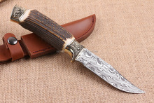OEM awesome collection hunting knife damascus and antler handle