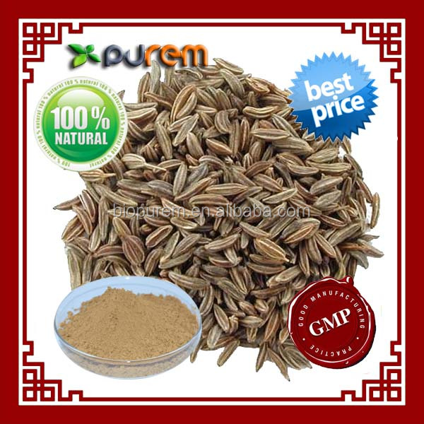 Carum carvi seed extract